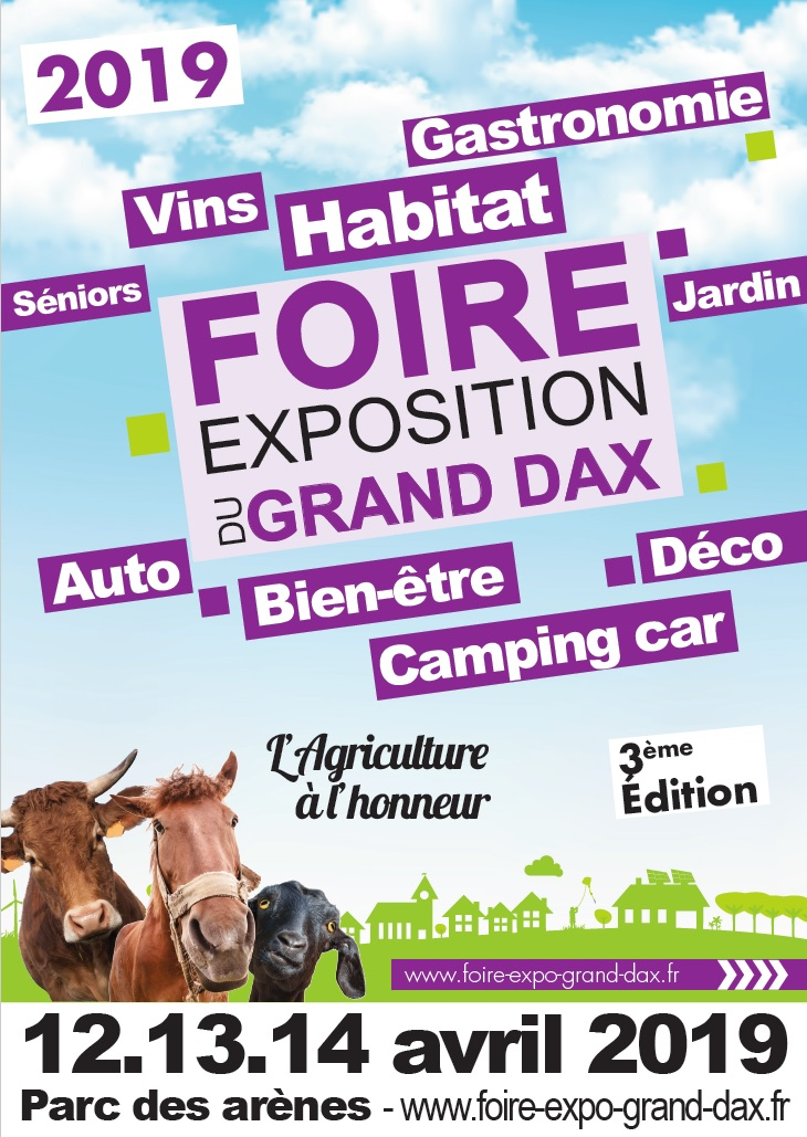 Affiche foire expo dax